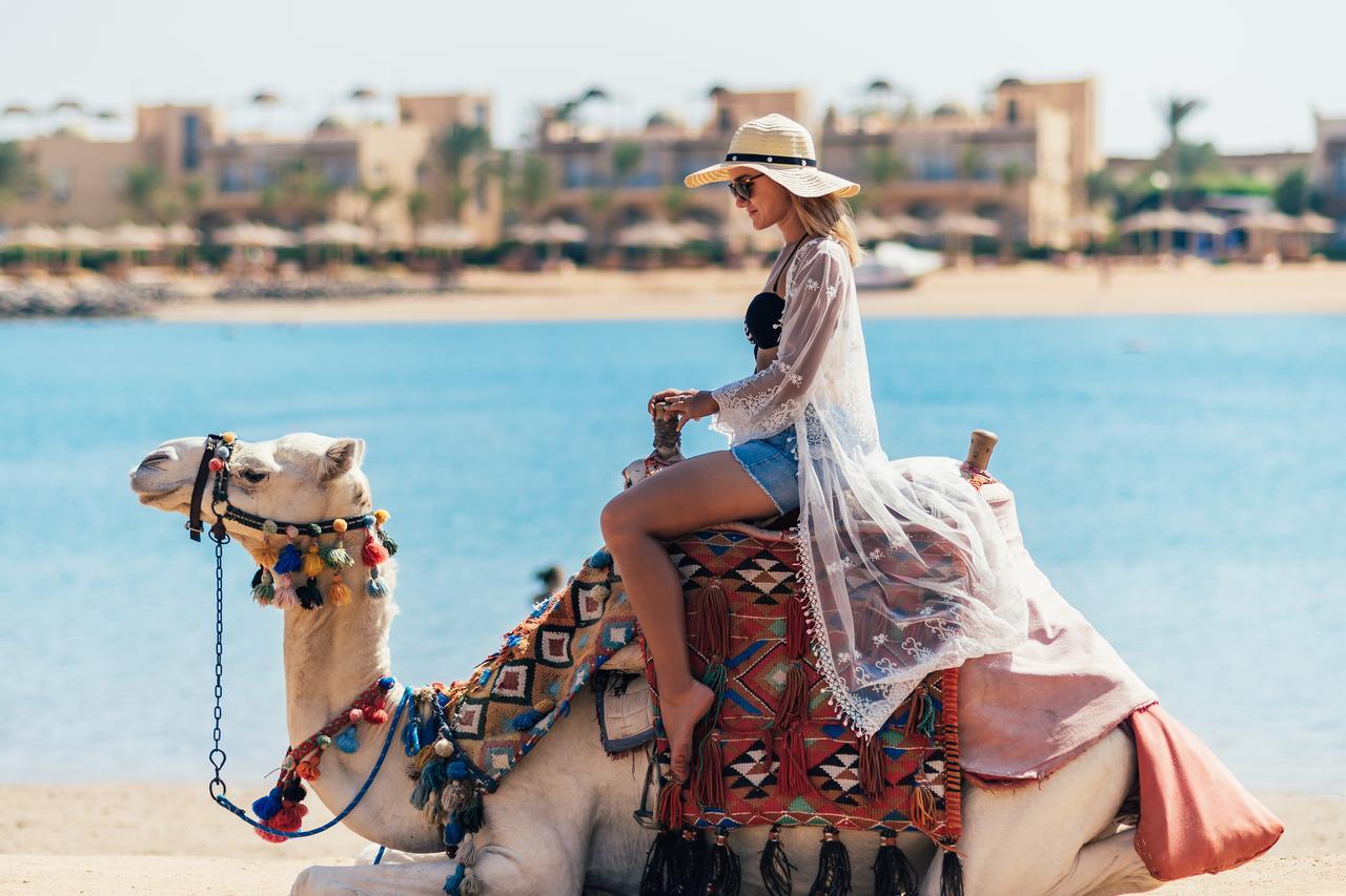 Vara 2020 in Egipt - Desert Rose Resort 5*